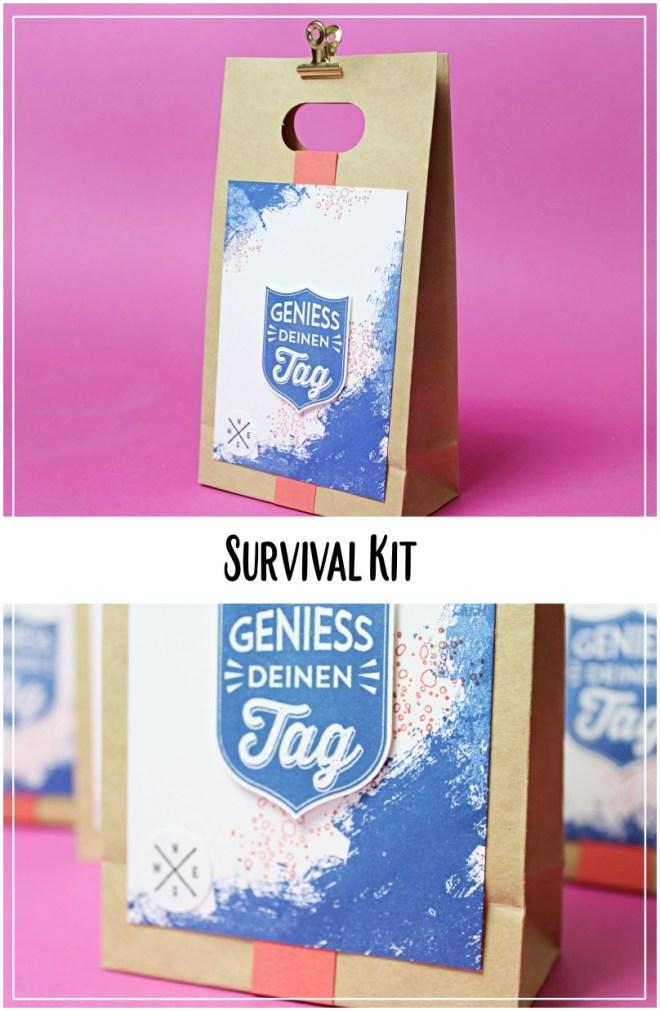 survival kit_stampinup_heidepark Soltau_blaubeere_artisan textures