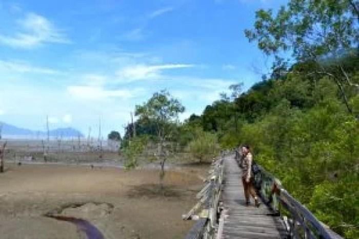 Pasarelas en la playa principal