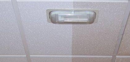 Servicios, Limpieza techos Madrid