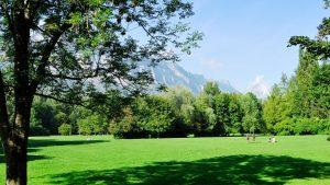Les parcs en ville : des îlots de fraîcheur !