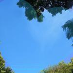 10 Zeichen, dass Du Dich in Hawaii verliebt hast