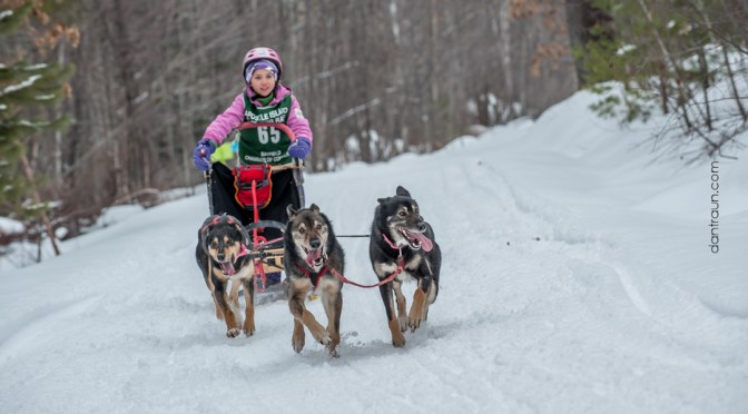 21st Annual Apostle Island Sled Dog Race – Bayfield, WI | #AISDR
