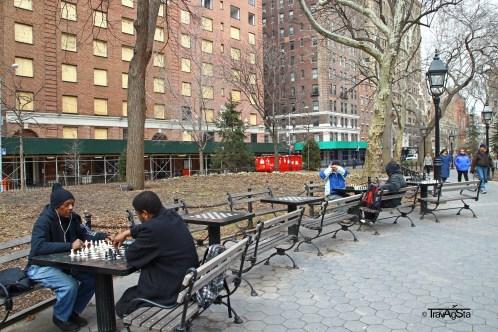 Washington Square Park (4)t