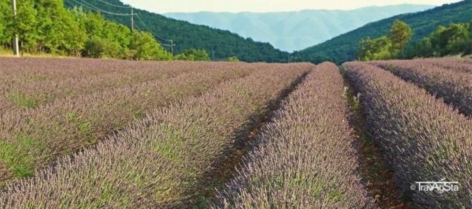 Slider-ProvenceNatur