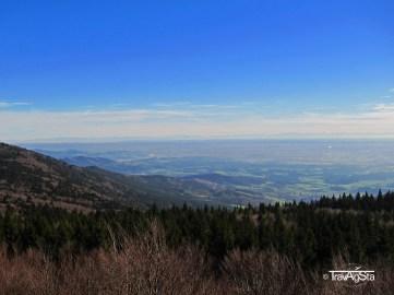 Bayerischer Wald (2)t