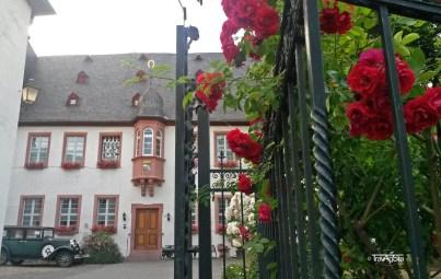 Rüdesheim (8)t