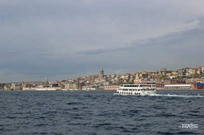 IMG_1170t