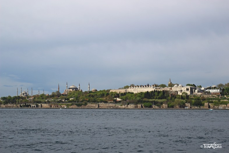 IMG_1174t