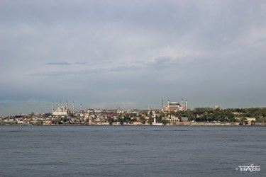 IMG_1179t