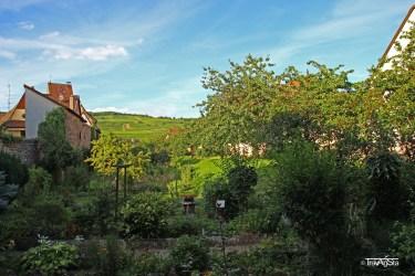 Stadtmauer (2)t