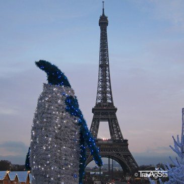 Why you should visit Paris during Christmas time!