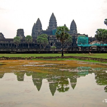The temples of Angkor Wat!