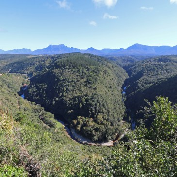 Beautiful, rough Garden Route – better come in summer!