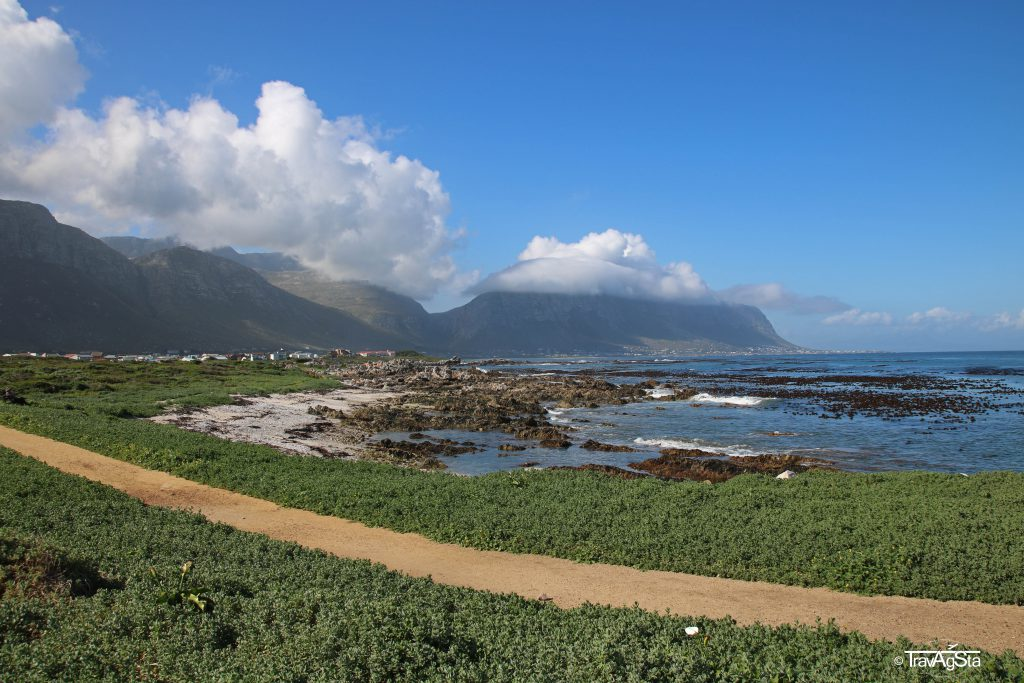 Betty'sBay, South Africa