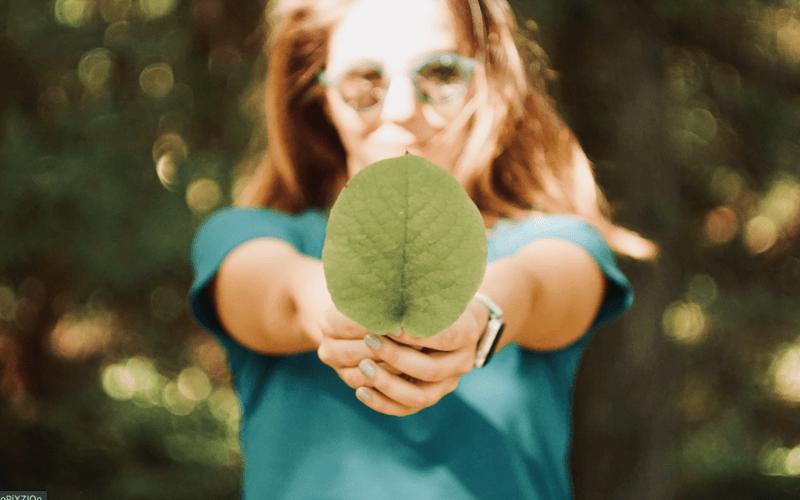 investir dans le vert