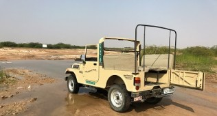 Desert Safari Jeep