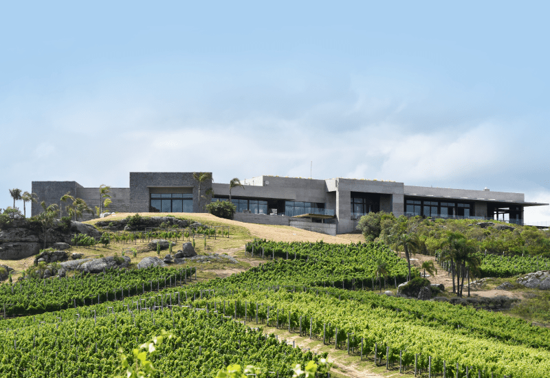 sustainable winery in uruguay