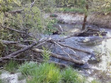 enlèvement d'embâcles en rivière, Landes