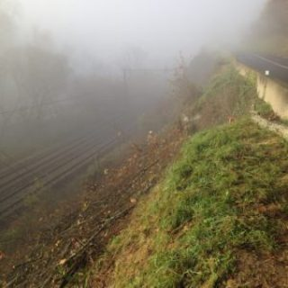 Élagage Hautes-Pyrénées