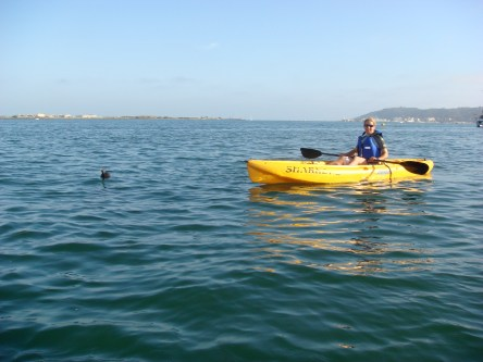 Sea kayaking near Shelter Island