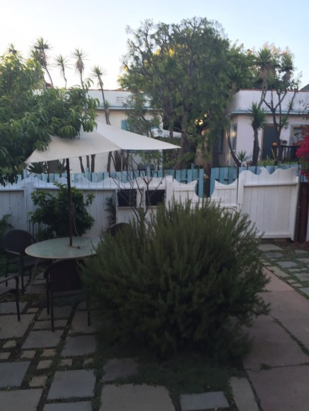 Our garden in Venice Beach - can't see the humming birds though