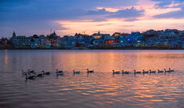 best places to visit in India in January