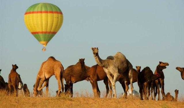 Hot air ballon at Pushkar, Rajasthan