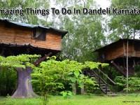 Amazing Things To Do In Dandeli Karnataka