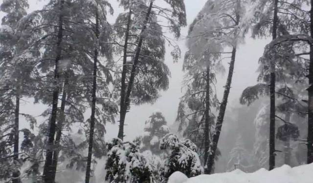 Top 10 Snowfall Places In India