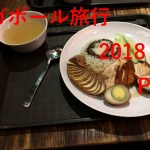 【海外旅行】シンガポール旅行 2018 Part7【シンガポール名物 チキンライス】