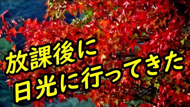 】大学終わりに夜行列車で日光に行ってきた【関東&関西1】 10/19-101