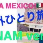 【メキシコ/海外ひとり旅】メキシコ国立自治大学を紹介!!
