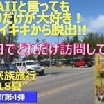 【オアフ島旅行】HAWAIIでもオアフだけ大好き家族の2018夏旅行記_スピンオフ第4弾(一日の活動量)