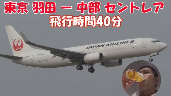 JAL日本航空 羽田から中部セントレア空港 国内線 唐辛子tvの飛行機レビュー