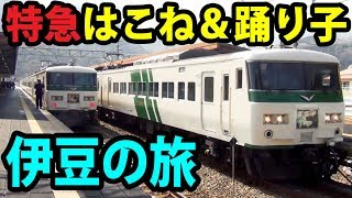 小田急ロマンスカーとJR特急踊り子で伊豆観光 新宿駅→河津駅 2/26-01