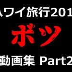 【ハワイ旅行記2019】本編に入り切らなかったボツ動画集:PART2