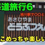 (6) 北海道旅行 旭山動物園は一人でも楽しい! そして旭川駅でデジャブ?!