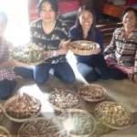【リボーンプログラム】カンボジア&アンコールワット女子一人旅 ご感想 YOMEchan 様