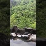 日光足尾の温泉、かじか荘の露天風呂の景色です。