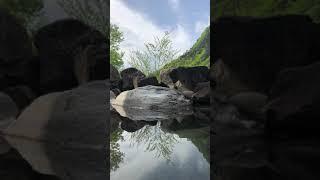 日光足尾の温泉、かじか荘の露天風呂からの景色です。