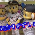 【ひとり旅】【感動】大阪でトラッキーに出会えるなんて、最高すぎでした。神対応に涙・・