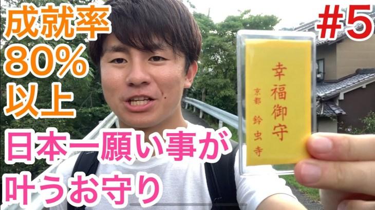 【京都男ひとり旅】#5 成就率80%以上!日本一お願い事が叶うお寺編