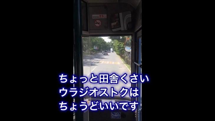 ウラジオストクひとり旅 2(完結) Trip for Vladivostok from Japan 2(End)