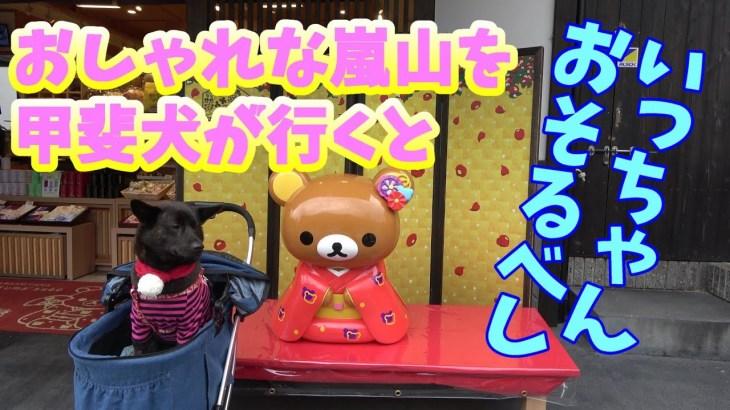 [Cute shops in Kyoto]【京都旅2/4】嵐山のグルメとオシャレなお店を巡る 甲斐犬いち