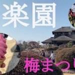 偕楽園【日本三名園】梅まつりを散策 スマ旅(Vlog)~Let's enjoy Japan‼