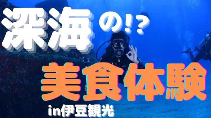 前編【伊豆観光】ディープグルメ(戸田の深海魚料理)㊙︎P子の生歌聞けます