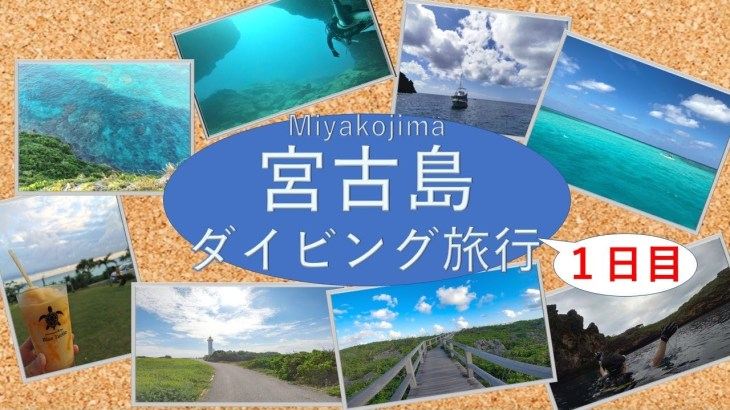 【vlog】宮古島旅行 – 圧倒的綺麗な海に仕事の疲れが癒される – ダイビングも行きます