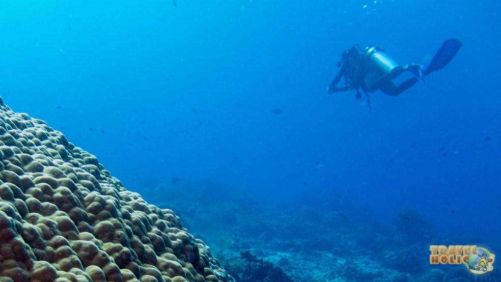 Plongée à Raja Ampat