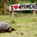 ガラパゴスへ旅行にいこう!ガラパゴス諸島の観光するのに効率的な周り方とは?