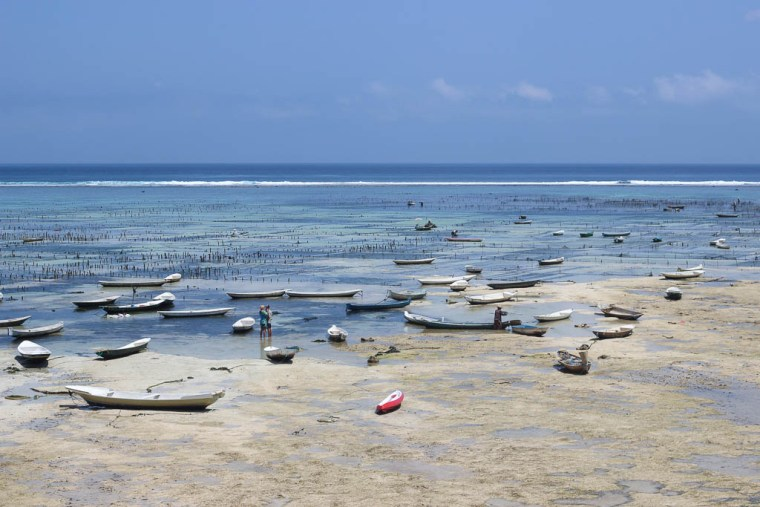 village-nusa-lembongan-seaweed-farms-1-of-1